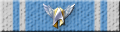 Pegasus Fleet 10 Year Commemorative Award